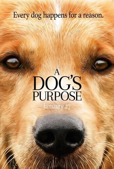 a_dogs_purpose_59782